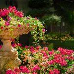 De beste tuin voor u